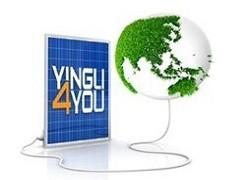 Yingli4you